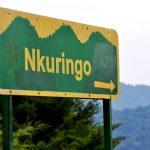 Nkuringo Family