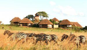 Kidepo Lodges