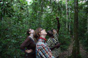 Mabira Forest Walk