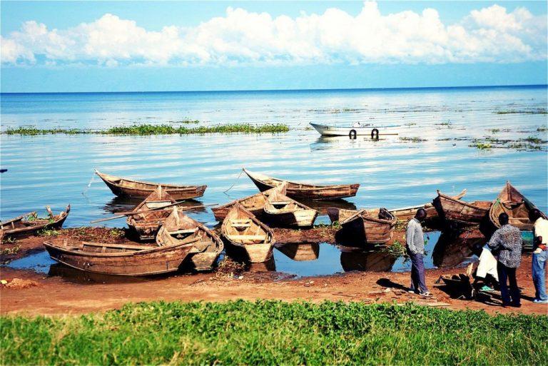 Boat Cruises in Uganda